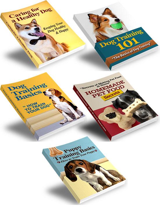 dog training essentials value pack
