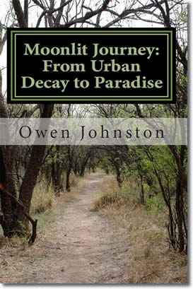 Moonlit Journey: A Poetic Quest from Urban Decay to Paradise
