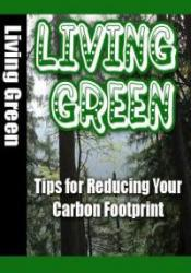 Live Green: Tips for Reducing Your Carbon Footprint