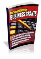 The Secret Of Winning Business Grants