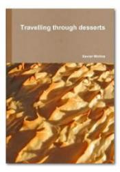 Travelling Through Desserts