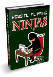 Website Flipping Ninjas